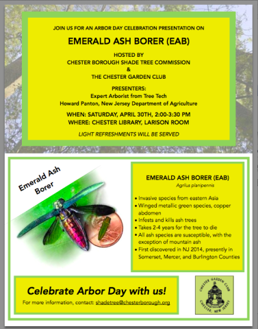 Emerald Ash Borer presentation @ Chester Library