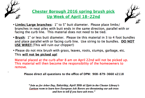 Spring brush pick-up