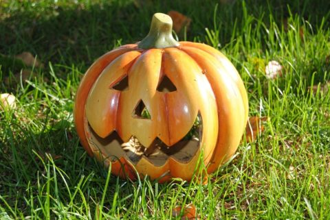 Halloween Ceramic Craft Party @ The Field House at Grove Street Park | Chester | New Jersey | United States