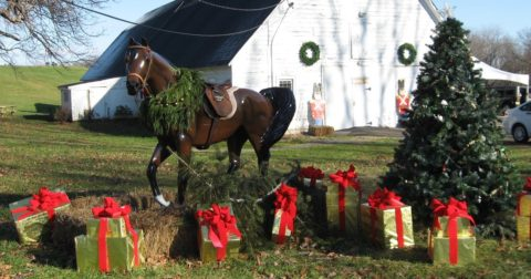 Festival of Trees @ Barn at Highlands Ridge Park | Chester | New Jersey | United States